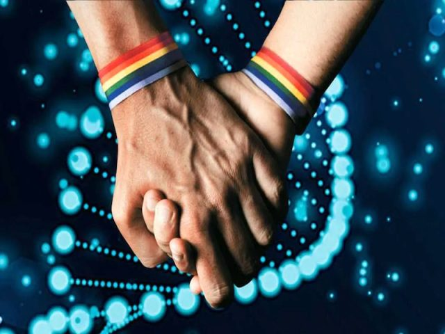 Conducta gay tendría que ver con genes humanos, revela estudio